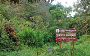 santuario-nacional-tabaconas-namballe