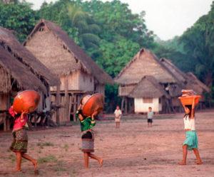 camunidades-nativas